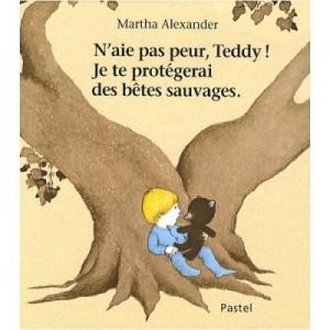 n__aie_pas_peur_teddy
