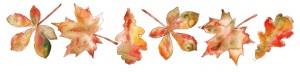 feuilles-dautomne